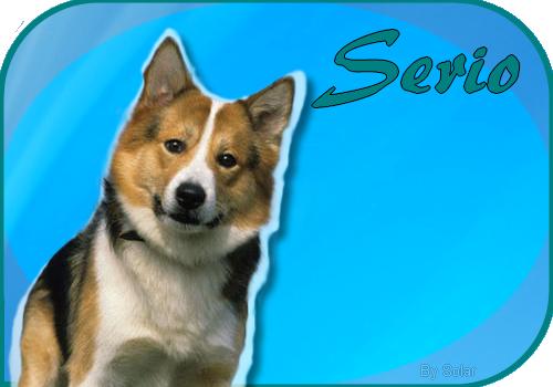 Présentation de Serio Serio-signa-4447e9a