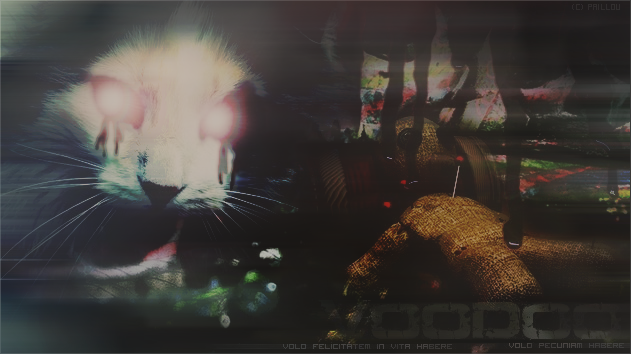 LDD - Paillou Voodoo-46869a4