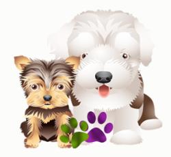 2 chiens copie 1